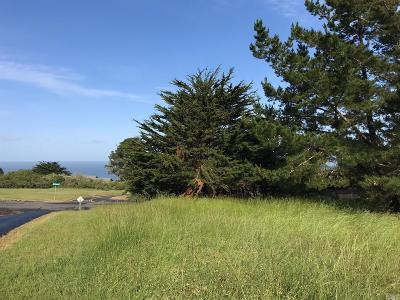Bodega, Bodega Bay Residential Lots & Land For Sale: 5471 Sierra Grande Drive