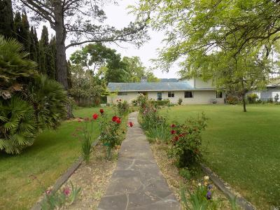 Sonoma Single Family Home For Sale: 24265 Arnold Drive
