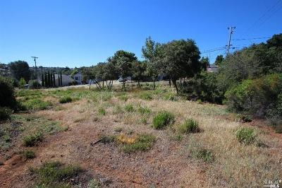 Kelseyville Residential Lots & Land For Sale: 9500 Chippewa Trail