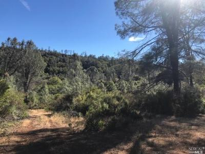 Lower Lake Residential Lots & Land For Sale: 15700 June Bug Drive