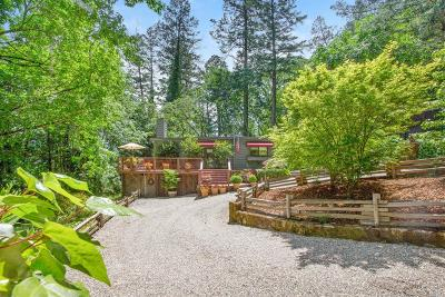 Napa County Single Family Home For Sale: 1327 Firview Drive