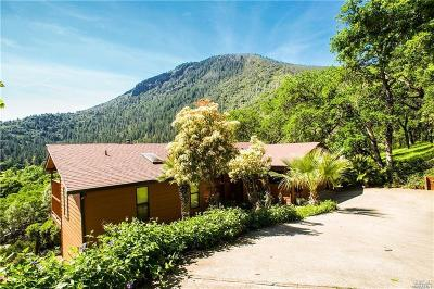 Kelseyville Single Family Home For Sale: 7999 Little Borax Lake Road
