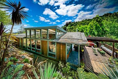 Marin County Single Family Home For Sale: 540 Scenic Avenue