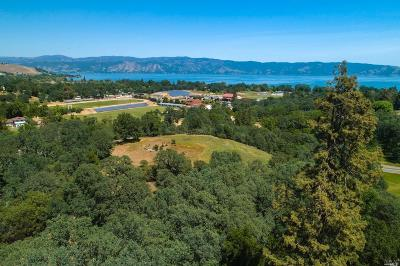 Lakeport Residential Lots & Land For Sale: 2403 Hartley Street