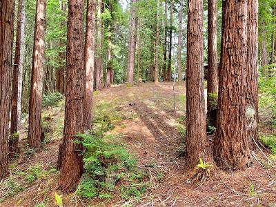 Jenner Residential Lots & Land For Sale: 22107 Ruoff Road