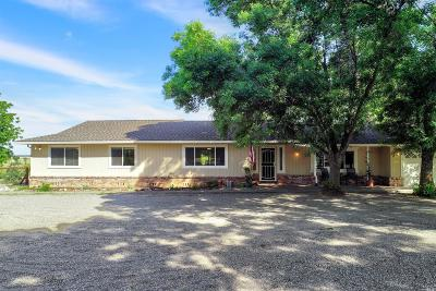 Winters Single Family Home For Sale: 28285 Encina Drive