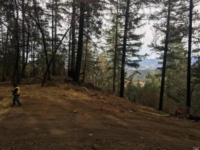 Napa Residential Lots & Land For Sale: 3633 Mount Veeder Road
