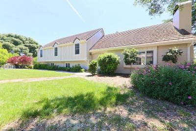 Ukiah Single Family Home For Sale: 1271 Ridgeview Drive