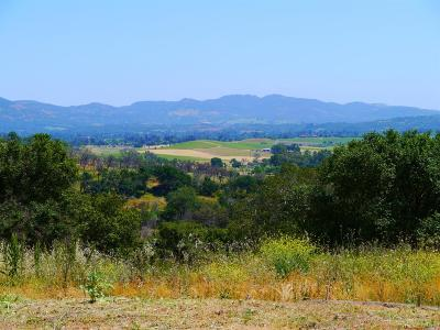 Napa Residential Lots & Land For Sale: 1044 Loma Vista Drive