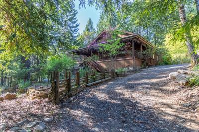 Willits Single Family Home For Sale: 5356 Wild Iris Lane