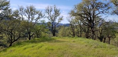 Ukiah Residential Lots & Land For Sale: 4535 Boonville Road