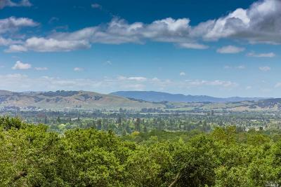 Sonoma Single Family Home For Sale: 970 Rachael Road