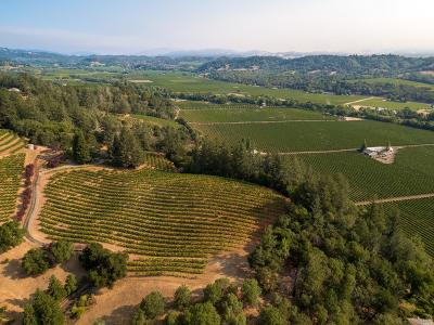 Sonoma County Residential Lots & Land For Sale: 6343 West Dry Creek Road