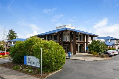 Sonoma County Commercial For Sale: 181 Andrieux Street #208