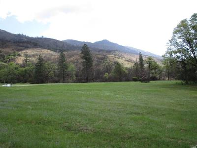 Upper Lake Residential Lots & Land For Sale: 16213 17 N 07 Road