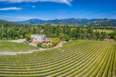 Calistoga Single Family Home For Sale: 4447 North St. Helena Highway