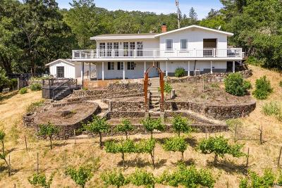 Calistoga Single Family Home For Sale: 3051 Foothill Boulevard