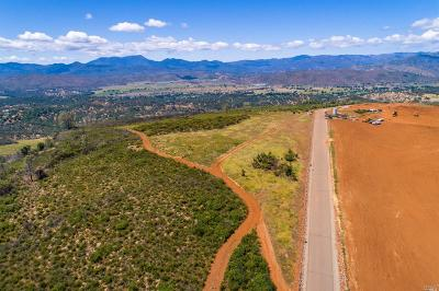 Middletown CA Residential Lots & Land For Sale: $700,000