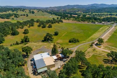 Willits Commercial For Sale: 11171 South State Hwy 29 Highway