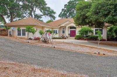 Kelseyville Single Family Home For Sale: 8240 Peninsula Drive