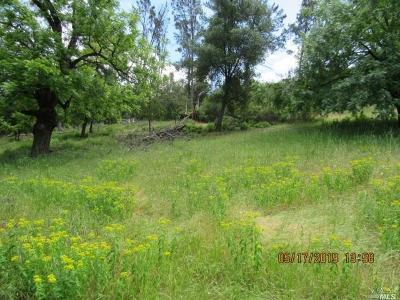 Kelseyville Residential Lots & Land For Sale: 4977 Klamath Road