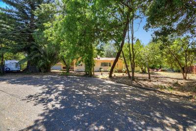 Sonoma Single Family Home For Sale: 395 Dechene Avenue