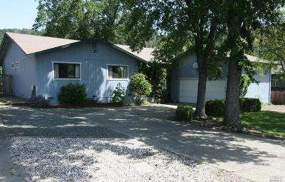 Hidden Valley Lake Single Family Home For Sale: 19908 Bear Valley Road