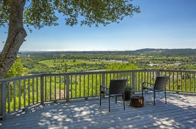 Healdsburg Single Family Home For Sale: 14850 McDonough Heights Road