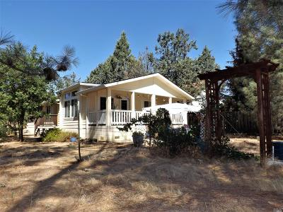 Clearlake Single Family Home For Sale: 17226 Cedar Way