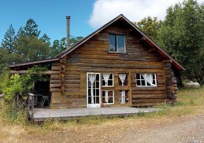 Cazadero Single Family Home For Sale