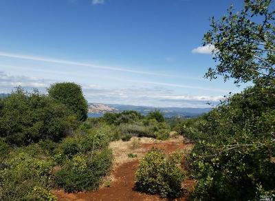 Kelseyville Residential Lots & Land For Sale: 8999 Miwok Way