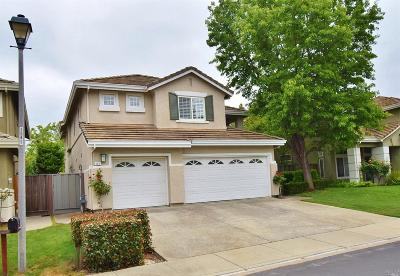 Contra Costa County Single Family Home For Sale: 263 Stetson Drive