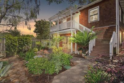 Marin County Single Family Home For Sale: 2 Rosebank Avenue