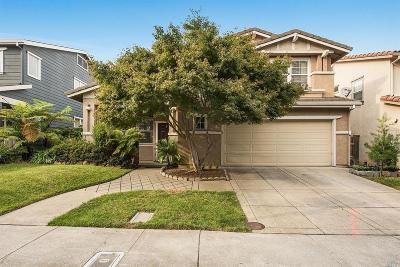 Napa County Single Family Home For Sale: 12 Firefly Lane