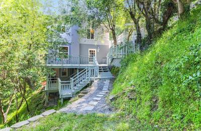 San Anselmo Single Family Home For Sale: 201 Floribel Avenue