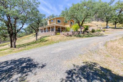 Redwood Valley Single Family Home For Sale: 11100 Bakers Creek Road