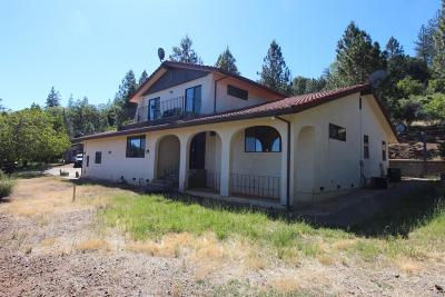 Kelseyville Single Family Home For Sale: 8771 Seigler Springs North Road