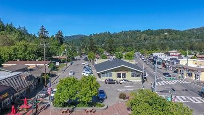Guerneville CA Commercial For Sale: $1,469,000