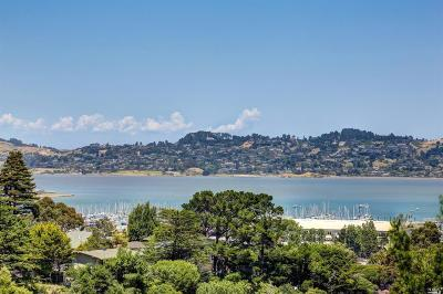 Sausalito Condo/Townhouse For Sale: 112 Lincoln Drive