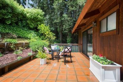 Mill Valley Single Family Home For Sale: 166 Hillside Avenue