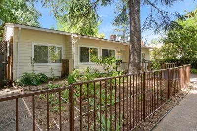 Calistoga Single Family Home For Sale: 1505 Cedar Street