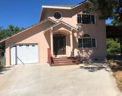 Clearlake Single Family Home For Sale: 12895 Island Circle