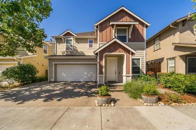 Petaluma Single Family Home For Sale: 1731 Southgate Drive