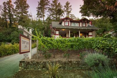 Calistoga Single Family Home For Sale: 1213 Foothill Boulevard