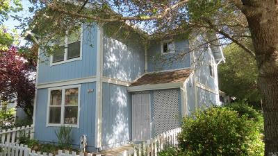 Graton Single Family Home For Sale: 2833 Bowen Street