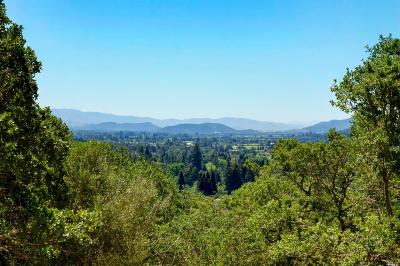 Napa County Residential Lots & Land For Sale: Spring Mountain Road