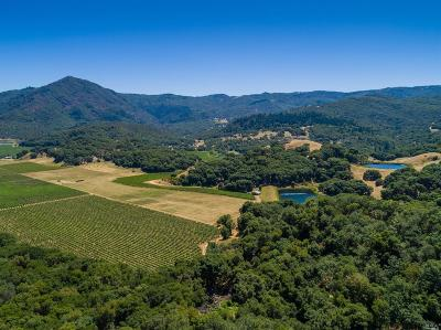 Napa County Residential Lots & Land For Sale: 1200 Feliz Creek Road