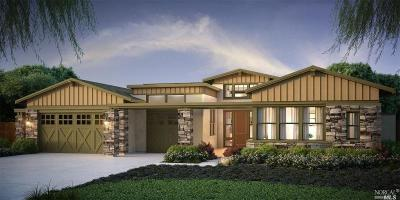 Contra Costa County Single Family Home For Sale: 200 Fronteras Drive