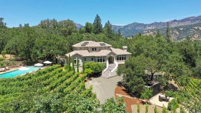 Calistoga Single Family Home For Sale: 1821 Foothill Boulevard