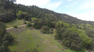 Residential Lots & Land For Sale: Oak Knoll Road